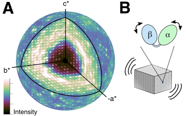 Three-dimensional map of diffuse scattering