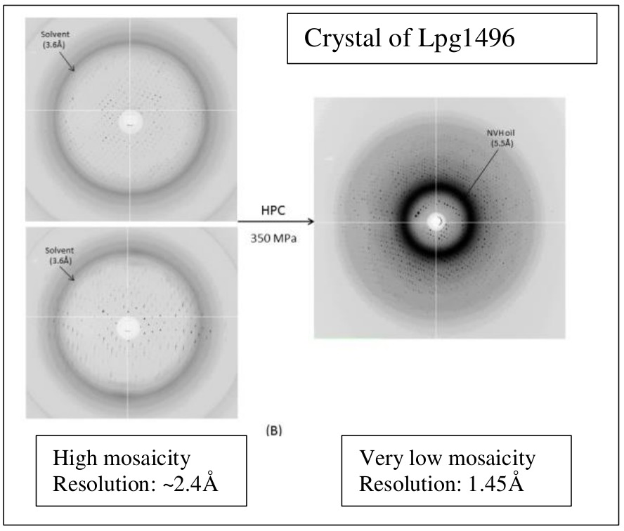 What can HPC: improved resolution from ~2.4 to 1.45 Å