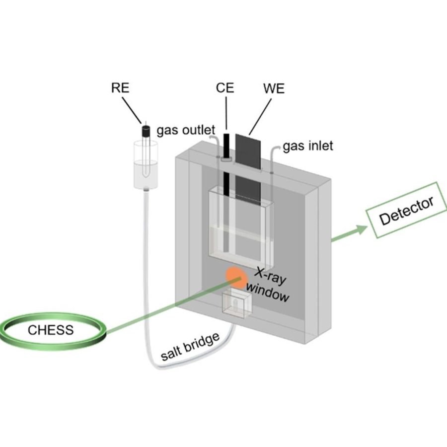 Schematic of the in situ XAS electrochemical cell.