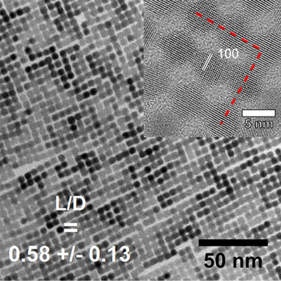 TEM image of a typical PbSe nanocrystal